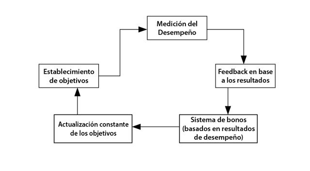 establecimiento_de_objetivos-01.png